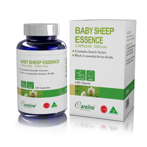 Careline Baby sheep 100v